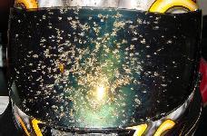 Hyttysvisiirit yleisimpiin kypärämalleihin alle tonnilla!